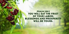 DAILY AFFIRMATIONS WITH SALT ASHIBUOGWU ON PSALMS 128